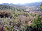 Spanish property for sale in: Farmhouses. Finca Rustica / Plot  -  30.000 - Euro