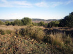 Spanish property for sale in: Farmhouses. Finca rustica / Plot - 66.000 - Euro
